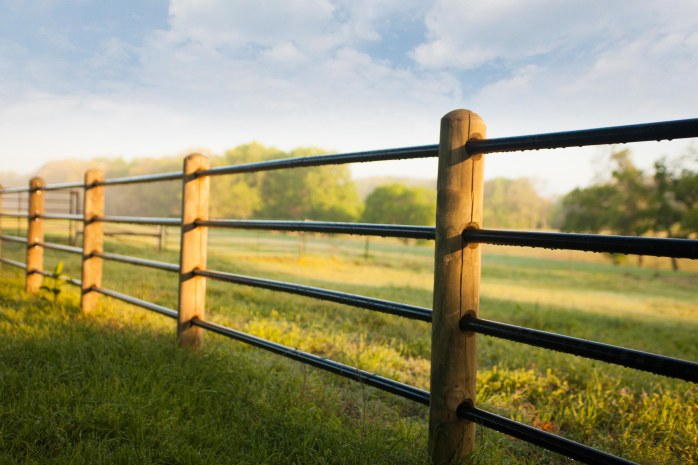 priefert-ponderosa-fence-3